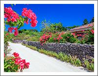 「夏の風景壁紙」